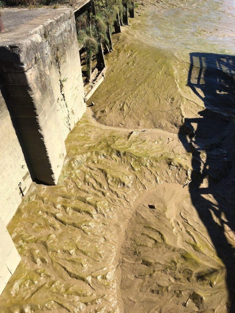 Garonne River mud