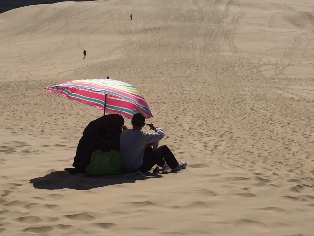 Picnic on Dune de Pilat
